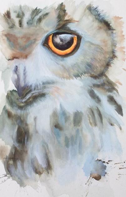 Winter Owl // Watercolor
