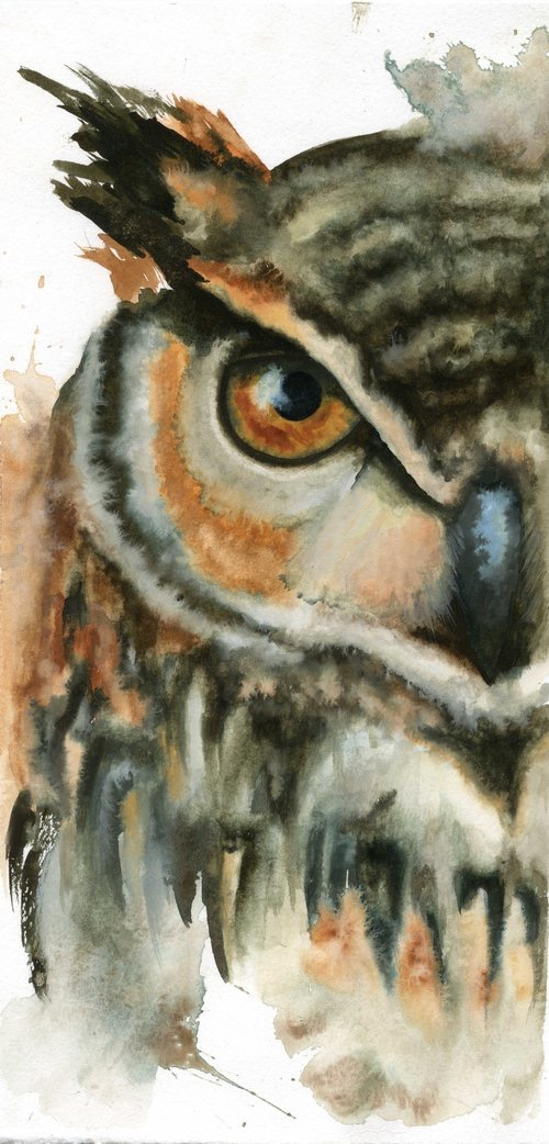 Great Horned Owl // Watercolor