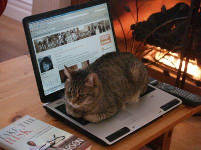 Nefret_on_laptop