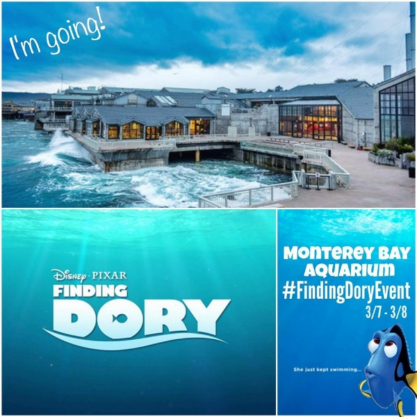 My Big Fat Cuban Family - Disney/Pixar Finding Dory