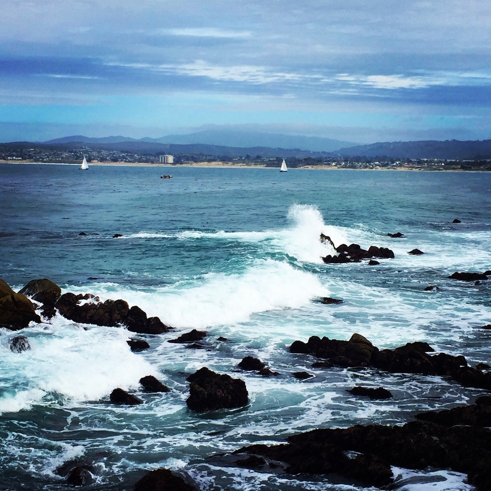 Monterey Bay. photo: M.Darby