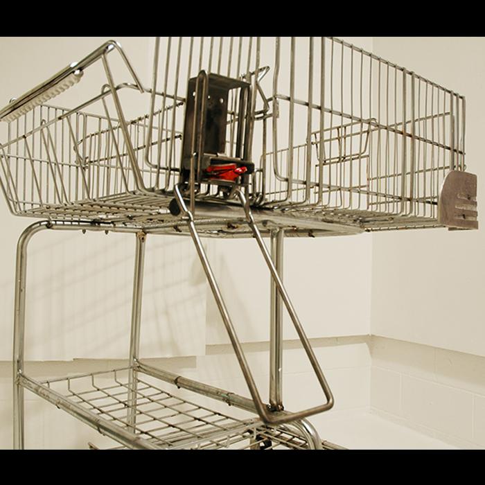 cart5.png