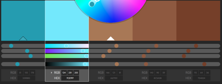 Our color palette team used Adobe Color to come up with complementary blue and brown tones.