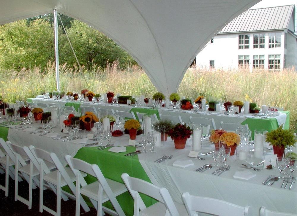 grass+table.JPG
