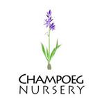 Champoeg Nursery