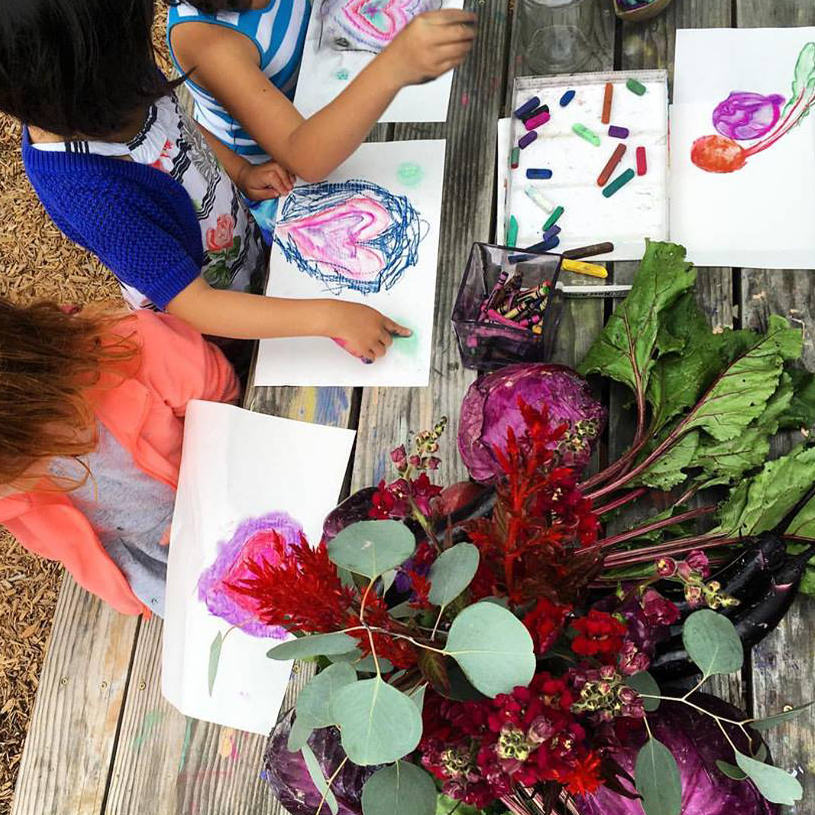 Week 10: August 26-30   Feast!    Campers will get to study what it takes to make our seeds grow through field experiments - from the soil, to the water, and the temperatures. We'll test the health of our soil, create chemical reactions, and report our quantified and qualified findings. Every experiment along the way will lead us closer to our final outcome, a delicious feast!