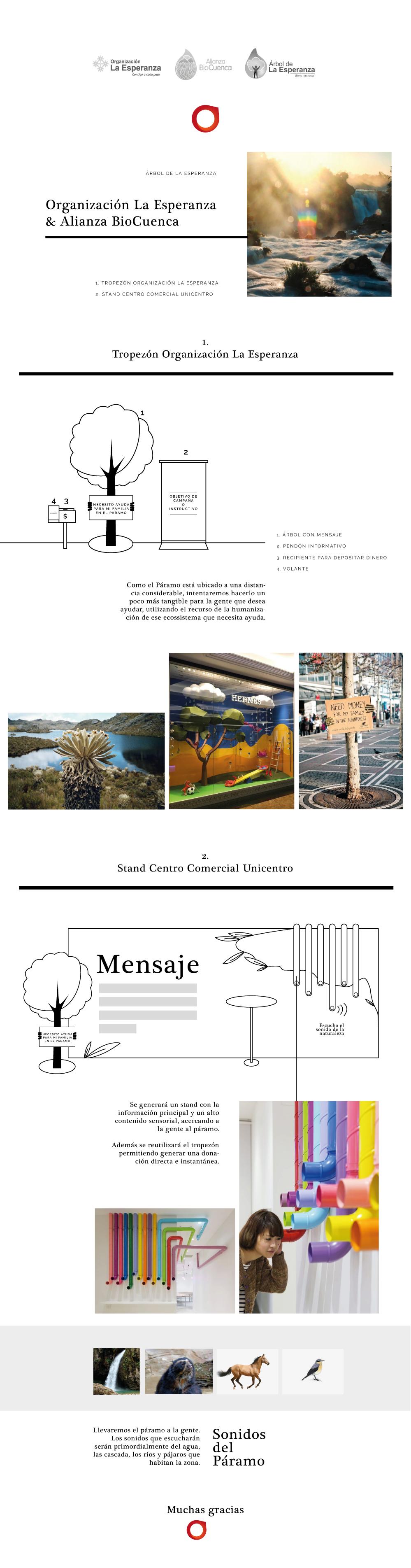 Board-Idea-AlianzaBioCuenca.png