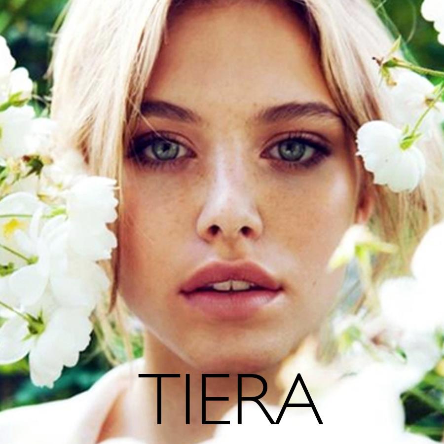 TIERA2_TEMPLATE.jpg