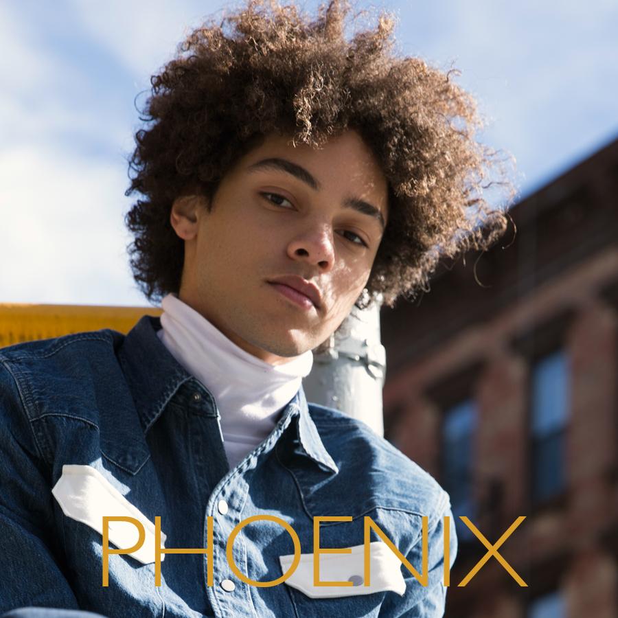 phoenix_TEMPLATE.jpg