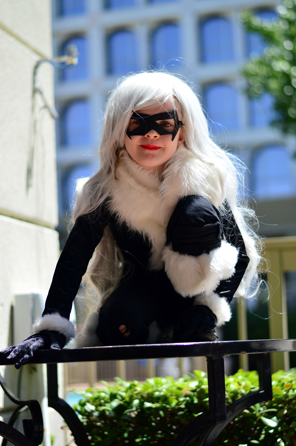 Black Cat Cosplay At North Texas Comic Book Show