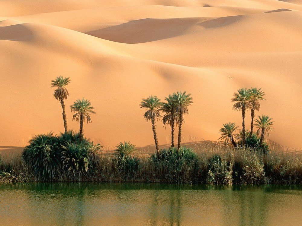 Sahara Desert Hiking Tour
