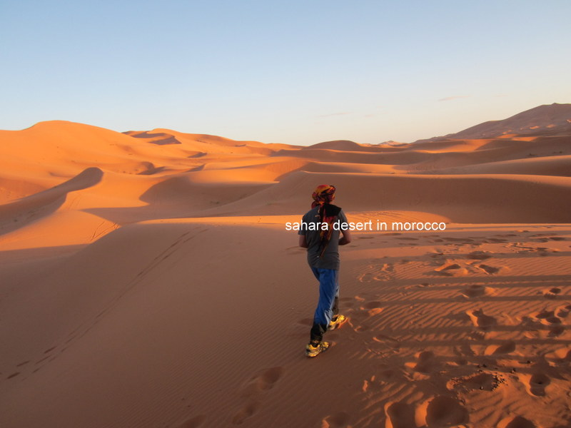 Hiking in Sahara Desert