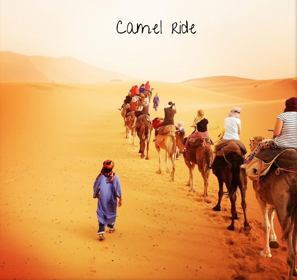Sahara Desert Camel Ride