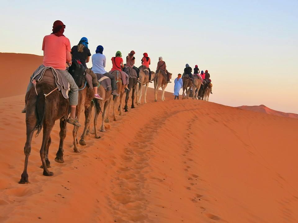 Camel Treks in Morocco