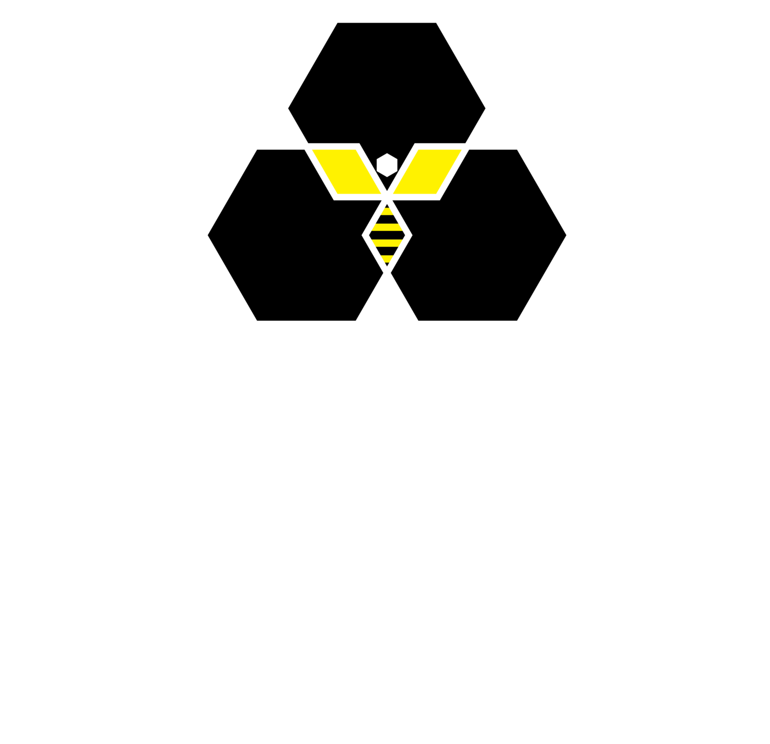 ENTER THE SECRET LIFE