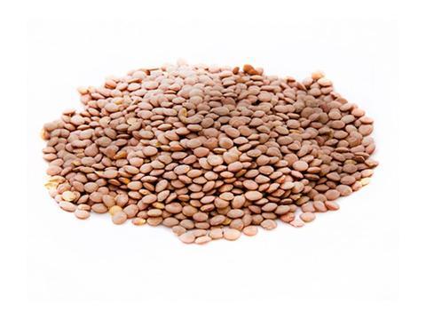Lentils Red: 2.99/lb