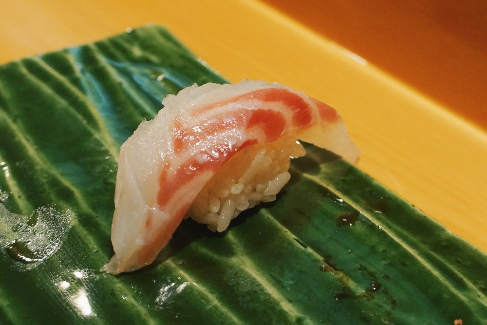 Akamutsu (Japan, Small grouper) $7/pc