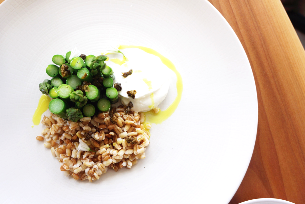 Asparagus with house yogurt, curry and sprouted grains $15