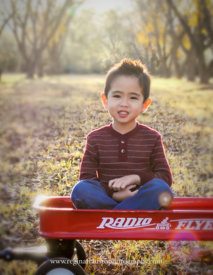 Fall_Winter_FamilyPhotos_Holiday_Christmas_MiniSession-10.png