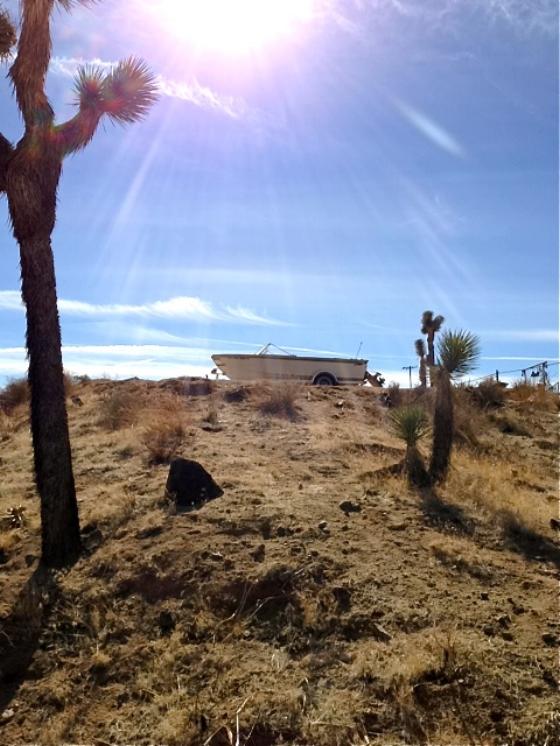 Mojave Desert summer 2013 ©Adele Jacques