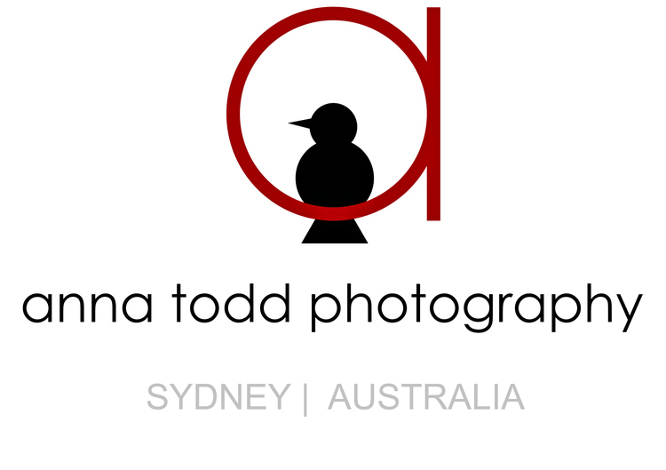 anna todd photography