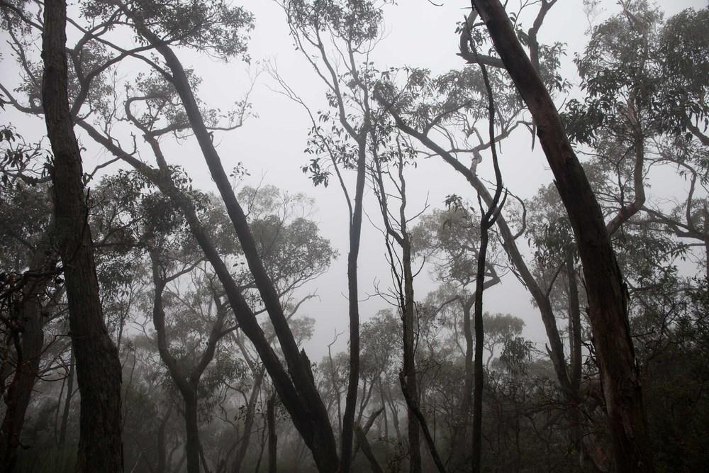 Détours Magazine . Australie . randonnée . Grampians National Park