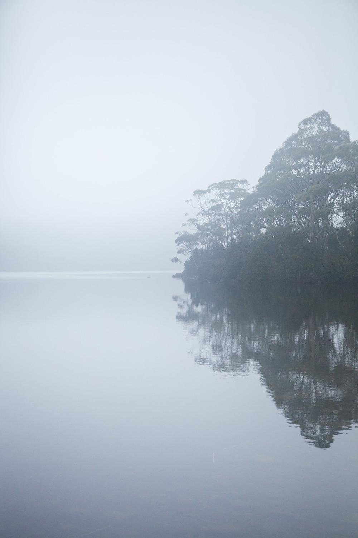 © Détours Magazine . Tasmanie, Australie . Lake Saint Clair National Park