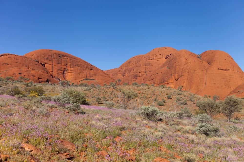 © Détours . Red Center, Australie . Uluru Kata Tjuta National Park