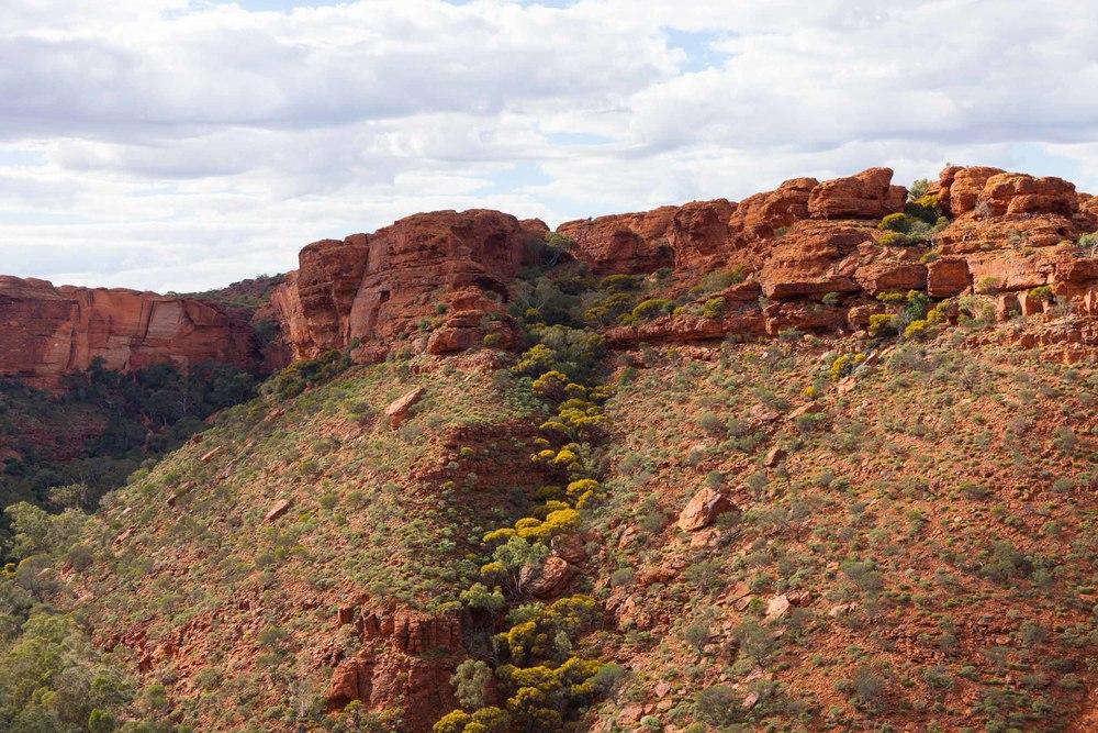 © Détours . Red Center, Australie . Watarrka Nation Park . Kings Canyon