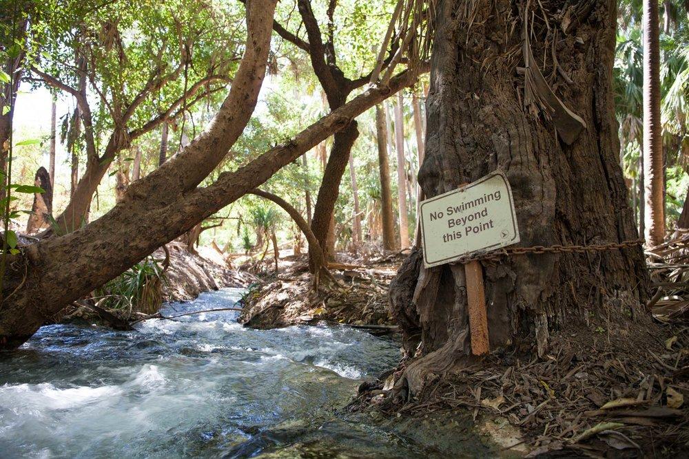 © Détours . Australie . Elsey National Park