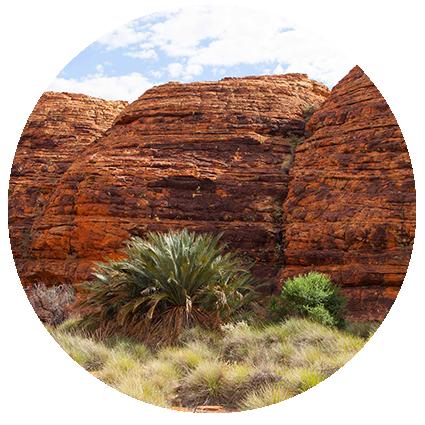 © Détours . Australie . Northern Territory . Watarrka Nation Park . Kings Canyon