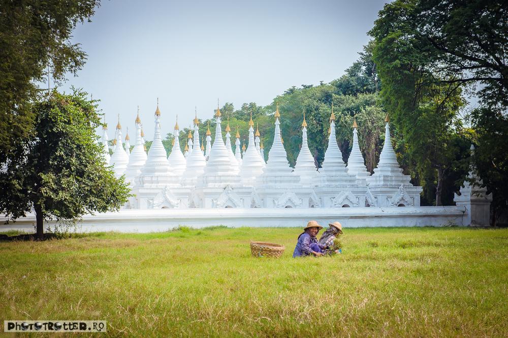 Femei strângând iarbă în fața pagodei Sandamuni, la poalele dealului Mandalay