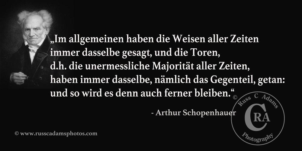 Portrait Arthur Schopenhauer:By Jules Lunteschütz (1822–1893) (Unknown) [Public domain], via Wikimedia Commons