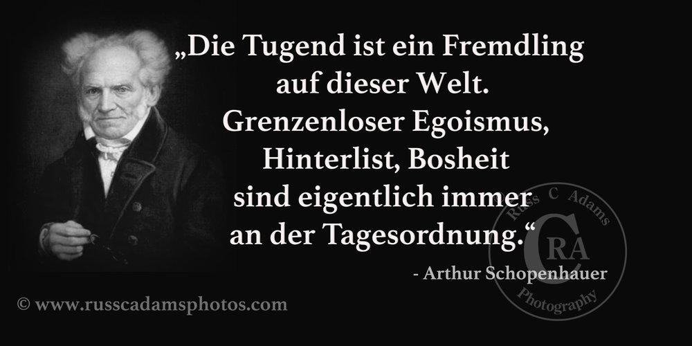 Schopenhauer-Zitate-Tugend-NEU.jpg