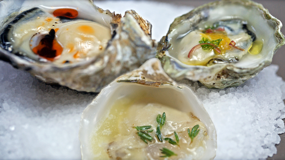 oysters enc1024px.jpg