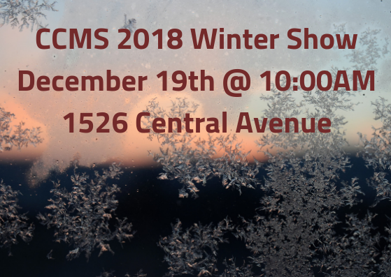 Winter Show 2018