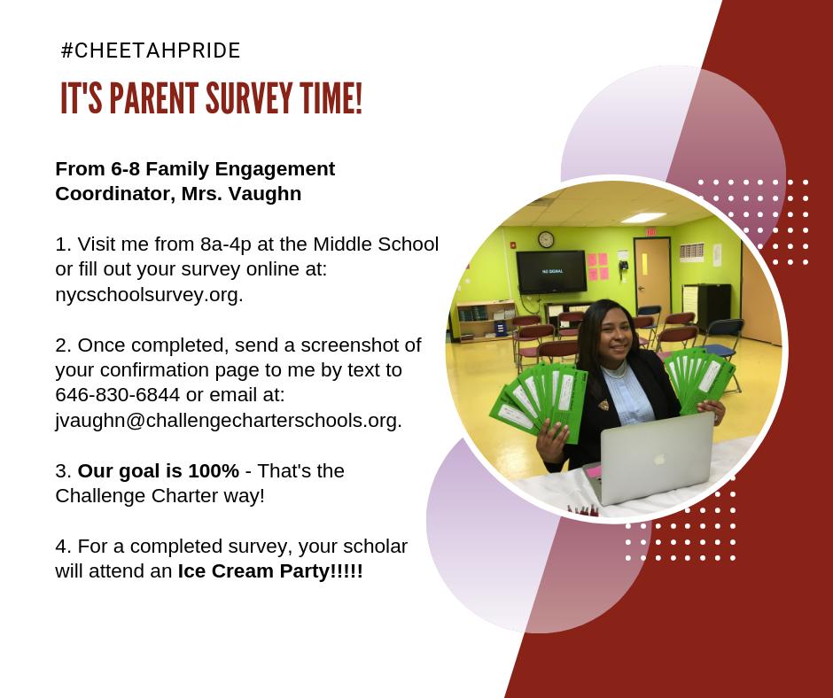 Mrs. Vaughn Survey Flyer