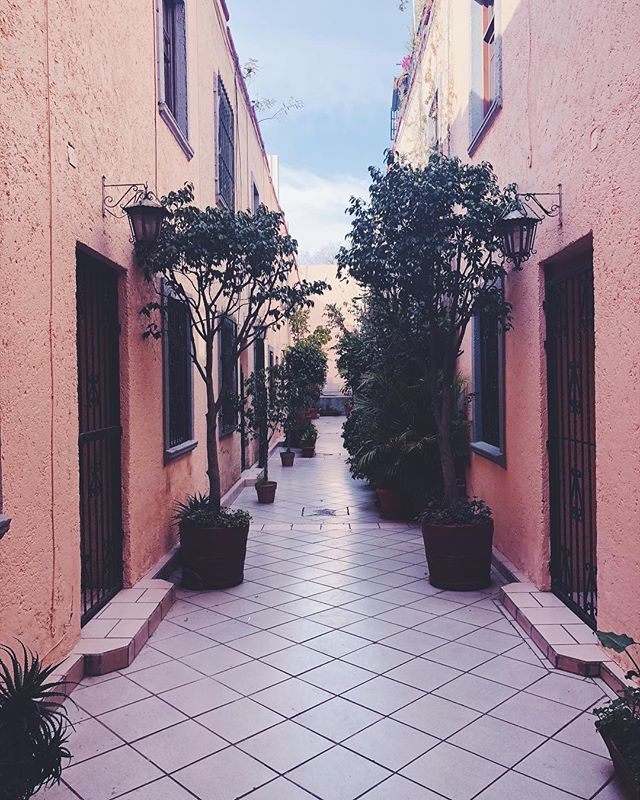 Dreamy pink courtyards.