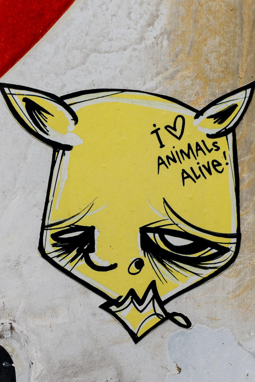 """""""ANIMALS ALIVE"""""""