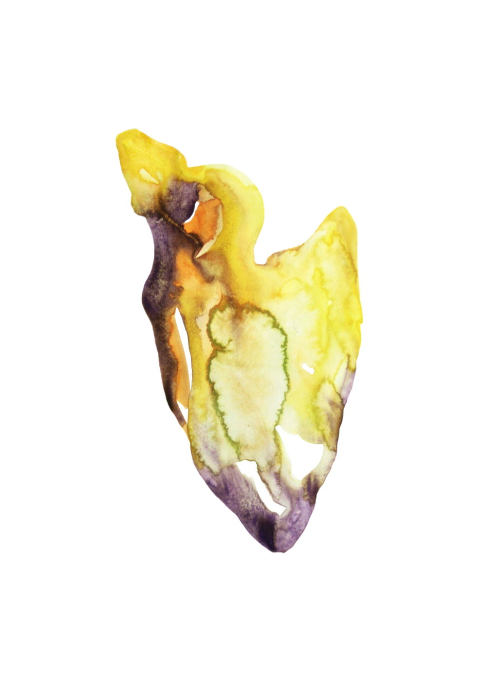 Yellow organism  ,    2013,    watercolor on paper,29.7x43cm