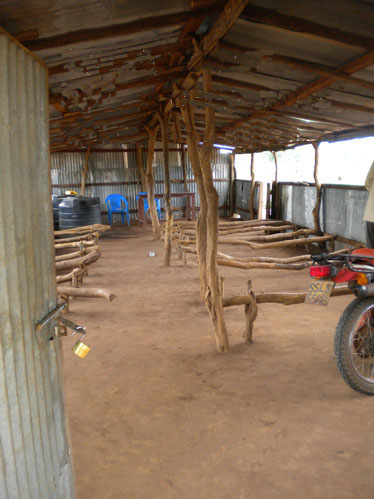 IRON SHEET CLASSROOM WHOSE SEATS AND BEAMS ARE BRANCHES AND SMALL TREES.