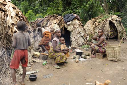 Efe Pygmies of the Ituri Forest, Eastern Congo