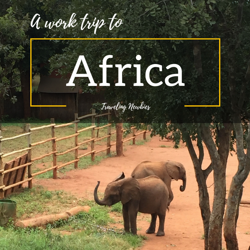 Traveling Newbies - Work Trip to Africa