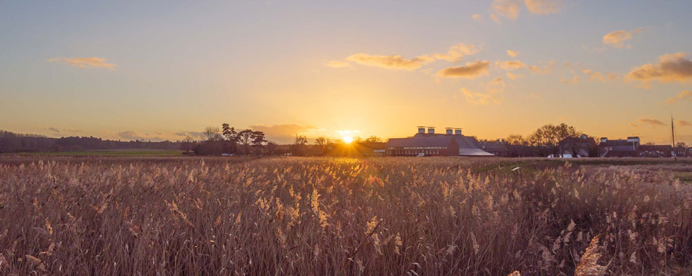 Snape Maltings -  Source