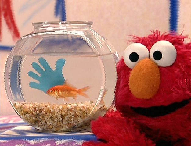 Photo Courtesy of http://muppet.wikia.com/wiki/Elmo's_World:_Hands