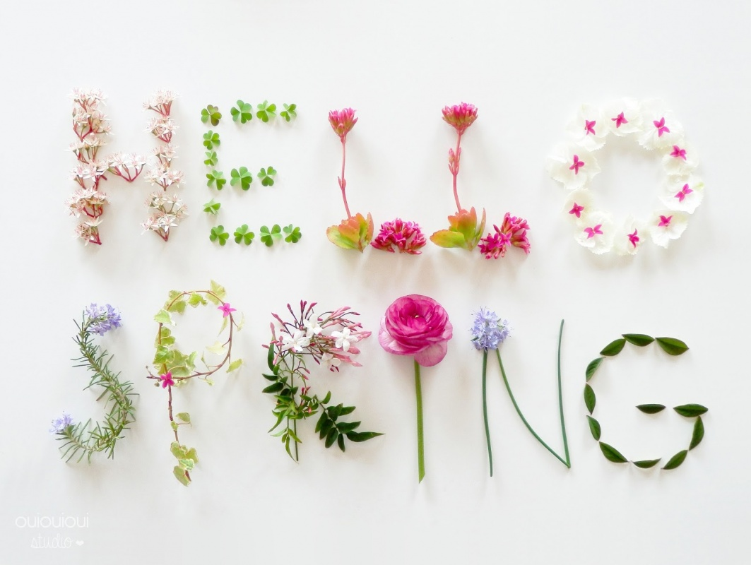 Spring Cleaning Quotes Spring Roundup  The Good The Bad And The Poopy