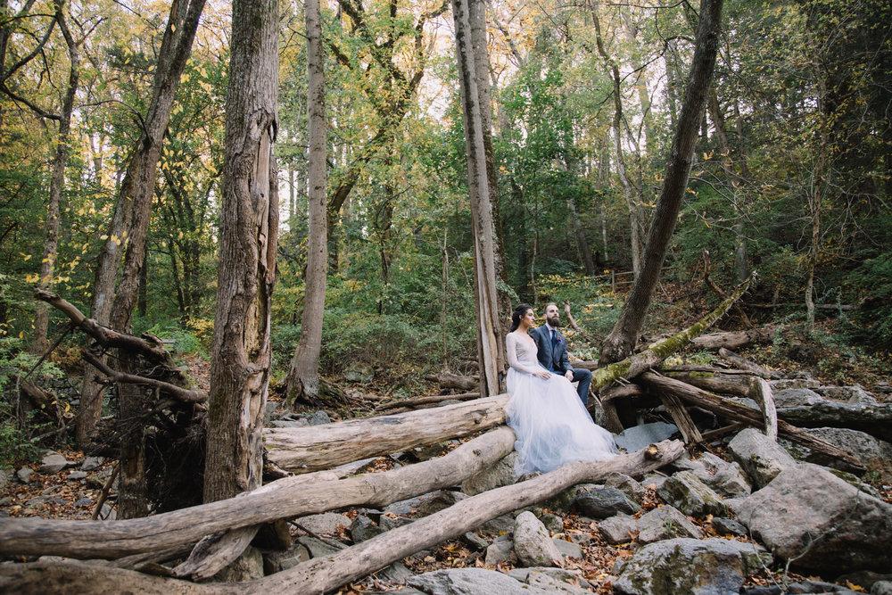 woodland wedding.jpg