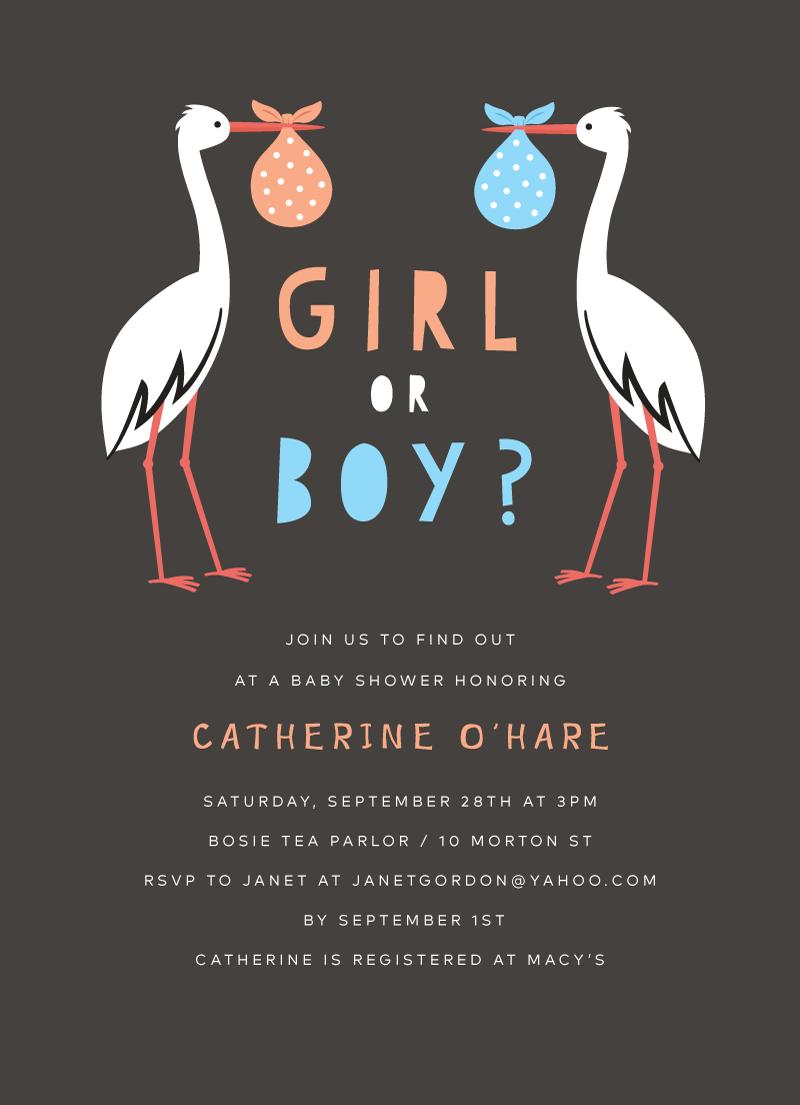 storks-boy-or-girl.png