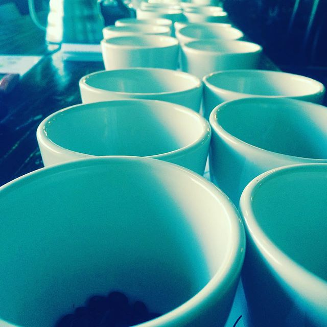 All star cupping with rockstar staff.  Great stuff ahead! ☕️☝️