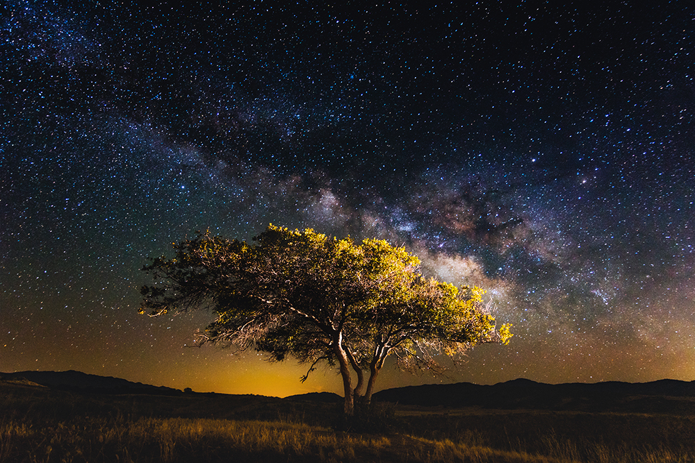 This image was captured in mid April at roughly 2am in the morning on my way heading to Borrego Springs, California.  A perfect example of how the Milky Way rises much later in the Winter / Spring season compared to the Summer months such as July. Where this same degree of arch in the Milky Way can been seen directly after sun down. Shot with the  Sony a6300  &  Tokina 11 - 20mm f2.8